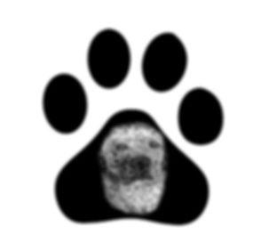FCCC Logo_edited.jpg