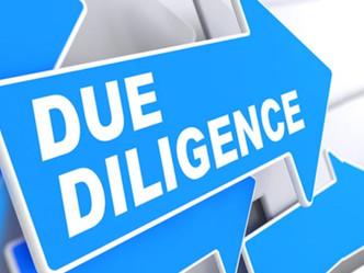 Vendor Due Diligence (VDD)