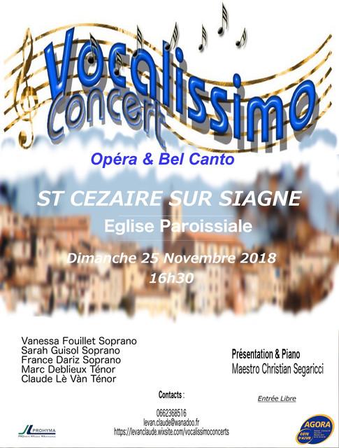 Affiche Concert Vocalissimo novembre 201