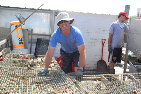Waterman Dana Handling Oysters