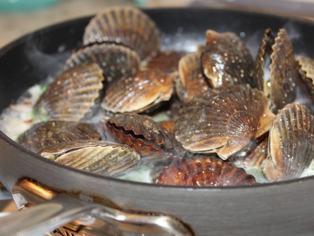 The Niantic Bay Scallop: Techniques and Recipes