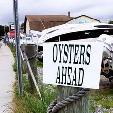 Oysters Ahead