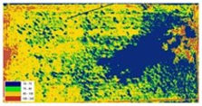 Remote Sensing of Equine Bermudagrass Pastures from a HelikiteTM  CE Dougherty et al.