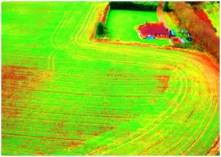 Near IR Image of Wheat Crop