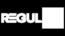 REGULAI logoArtboard 1 copyPNG.png
