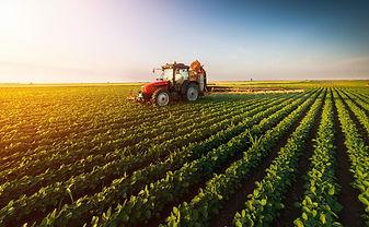 consultoria agronômica