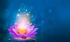 lotus lgrac.jpg