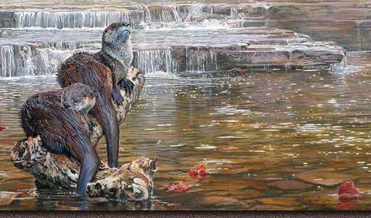 Lower Falls Otter