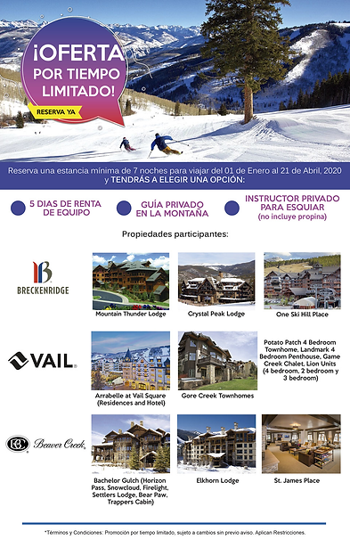 VAIL 2.png