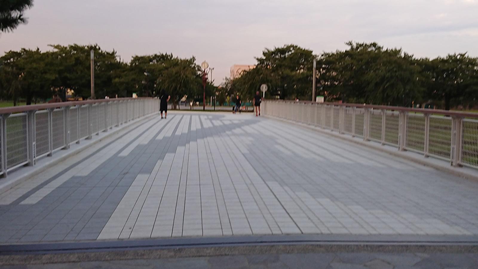 39_photo