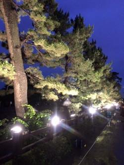 草加松原夢祭り_28