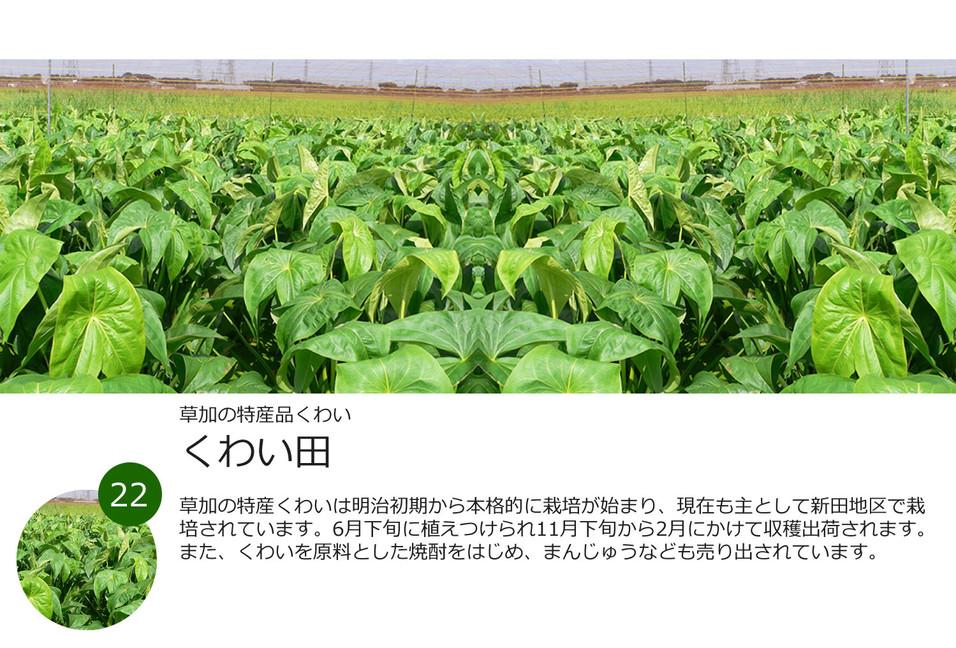 22景.jpg