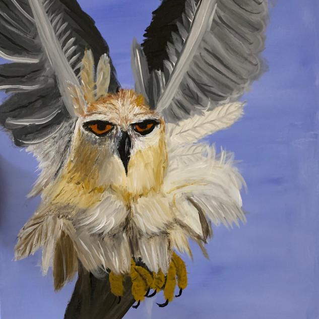 """""""Taking Flight"""" by Misty Nelson"""