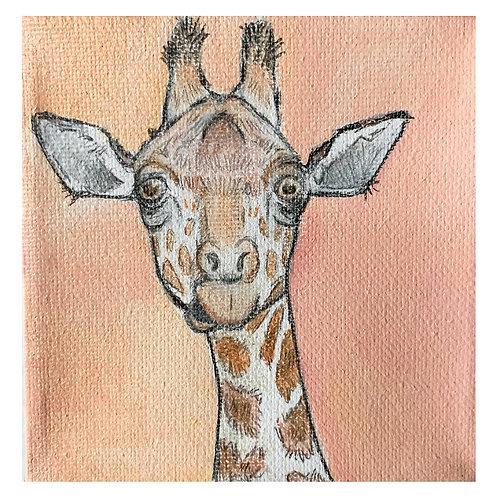 Giraffe on Pink-Susan Shoemaker