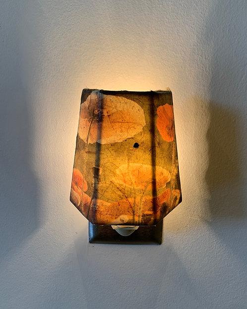 Paper Art Nightlight - Earlene Larson-Cedarosa
