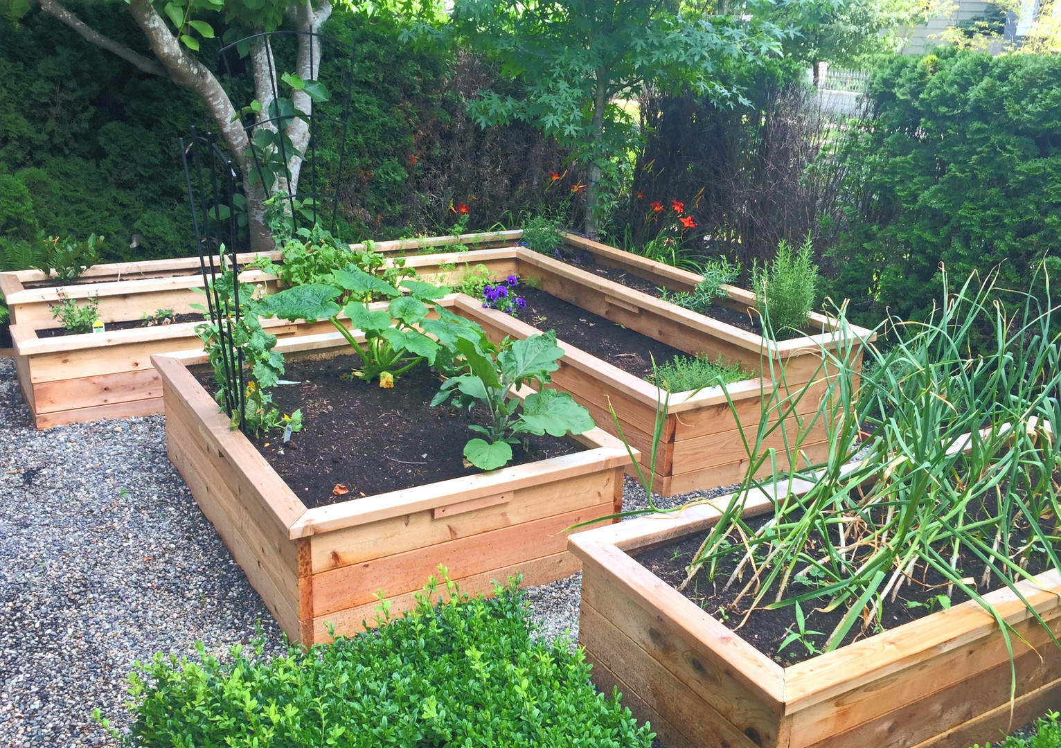 Wooden Planter Grouping