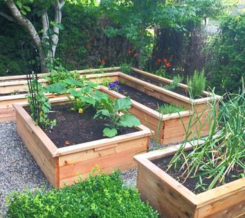 Planter Box Groupings
