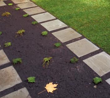 Planted Path