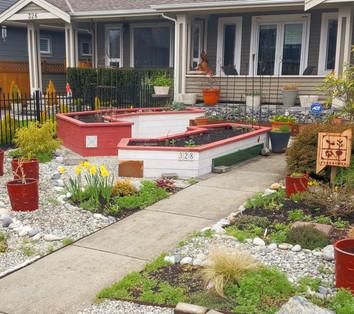 Frontyard Gardening