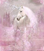 Unicorn9.jpg