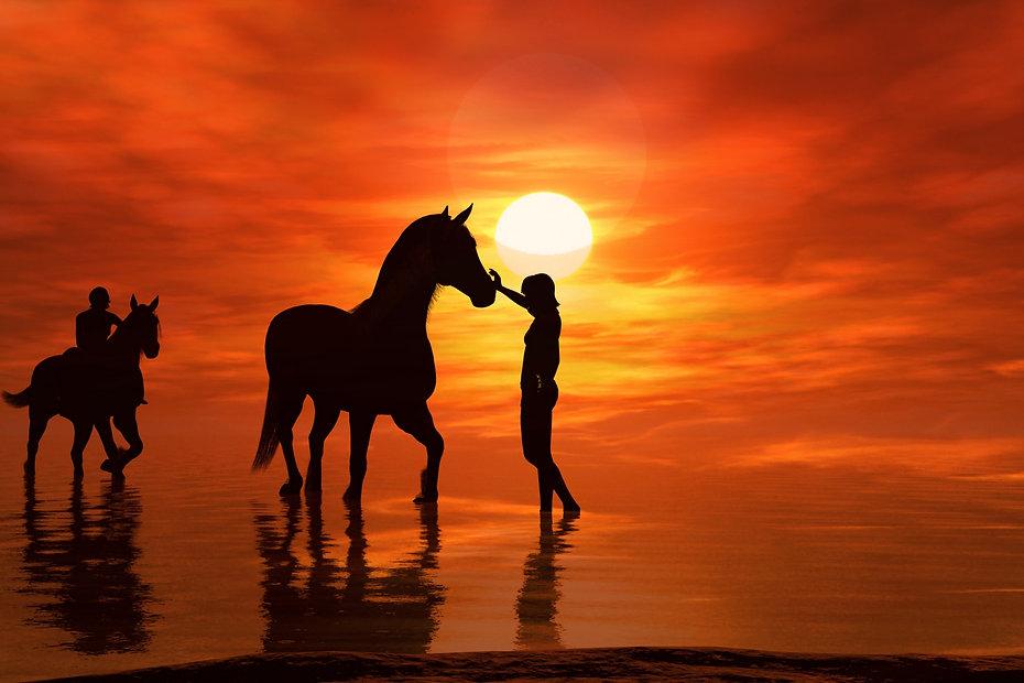 HorseBeach1.jpg
