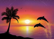 Dolphin4.jpg