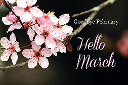 159139-Goodbye-February-Hello-March.jpg