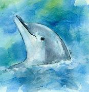 Dolphin11.jpg