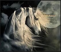 Unicorn2.jpg