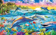 Dolphins9.jpg