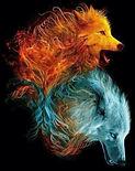 faded wolves.jpg