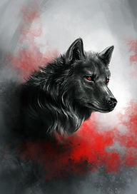 Wolf3.jpg