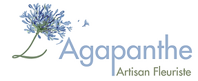 l'Agapanthe fleuriste