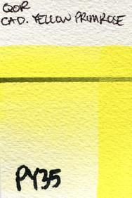 Cadmium Yellow Primrose