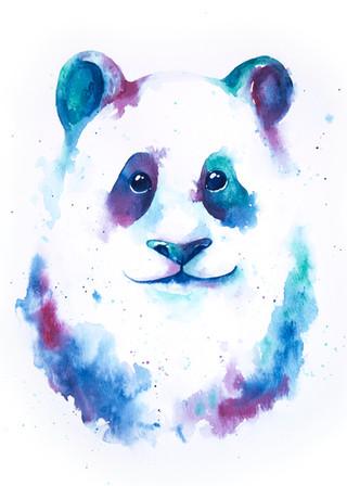 Panda Splash