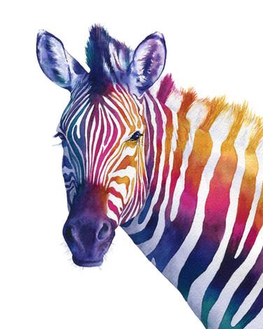 Sunset Rainbow Zebra