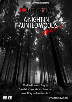Curiosity - Haunted Woods