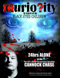 Curiosity - Cannock Chase