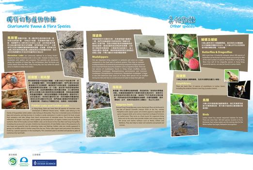 大嶼山生態介紹