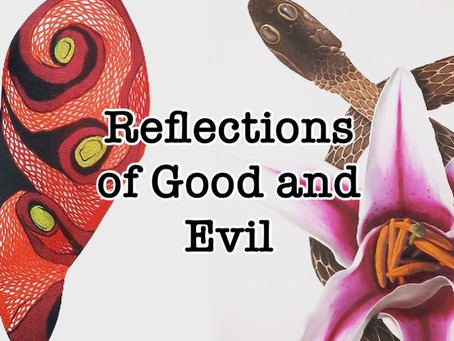 Reflections of Good and Evil