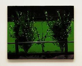 sapling hedge.jpg