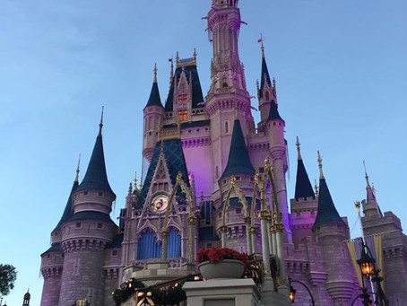 10 Travel Tips For Florida, While Pregnant in Disney World
