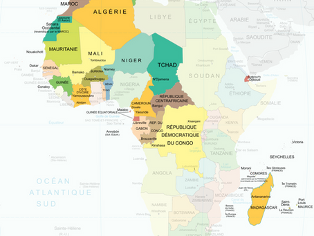 Cameroon, a risk for Germany, an opportunity for the world!
