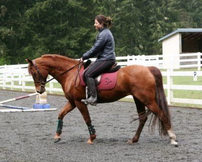 Under saddle