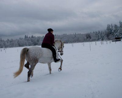 Albert snow rides