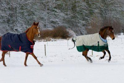 Snow runs