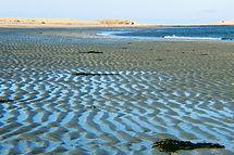 shallow bay 2.JPG