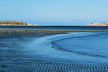 shallow bay 3.JPG