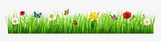 spring flower border.png