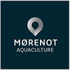 morenot_logo.jpg